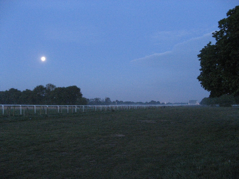 Misty Moon over Doncaster racecourse