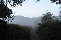 Mist over The Fen