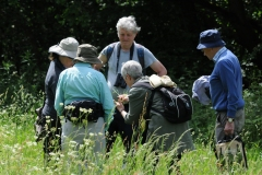 Doncaster Nats meeting at Anston Stones