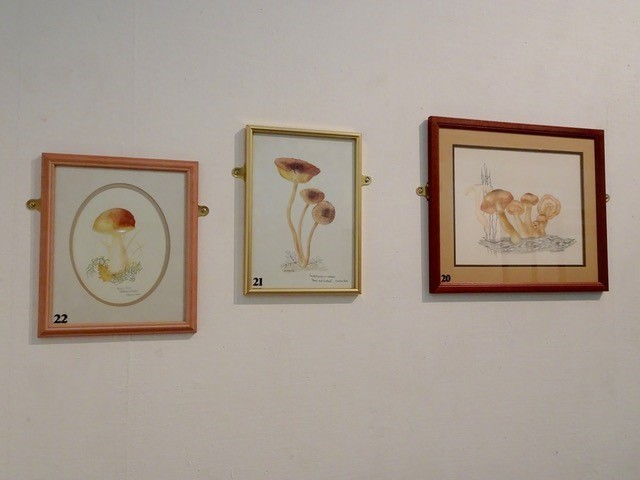 Dorothy-Bramleys-Paintings