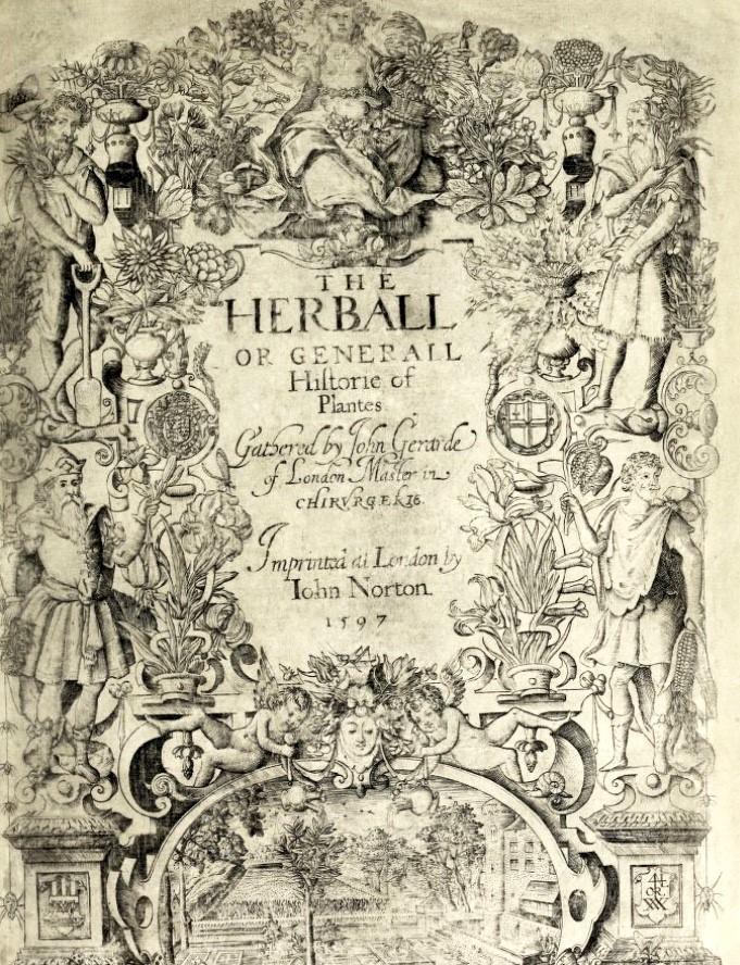 Gerard's Herbal 1597