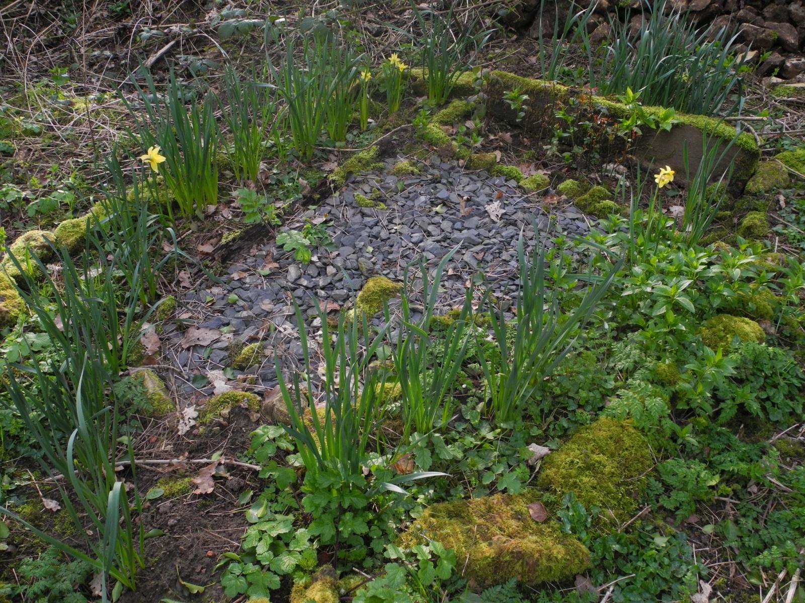 Woodland Grave