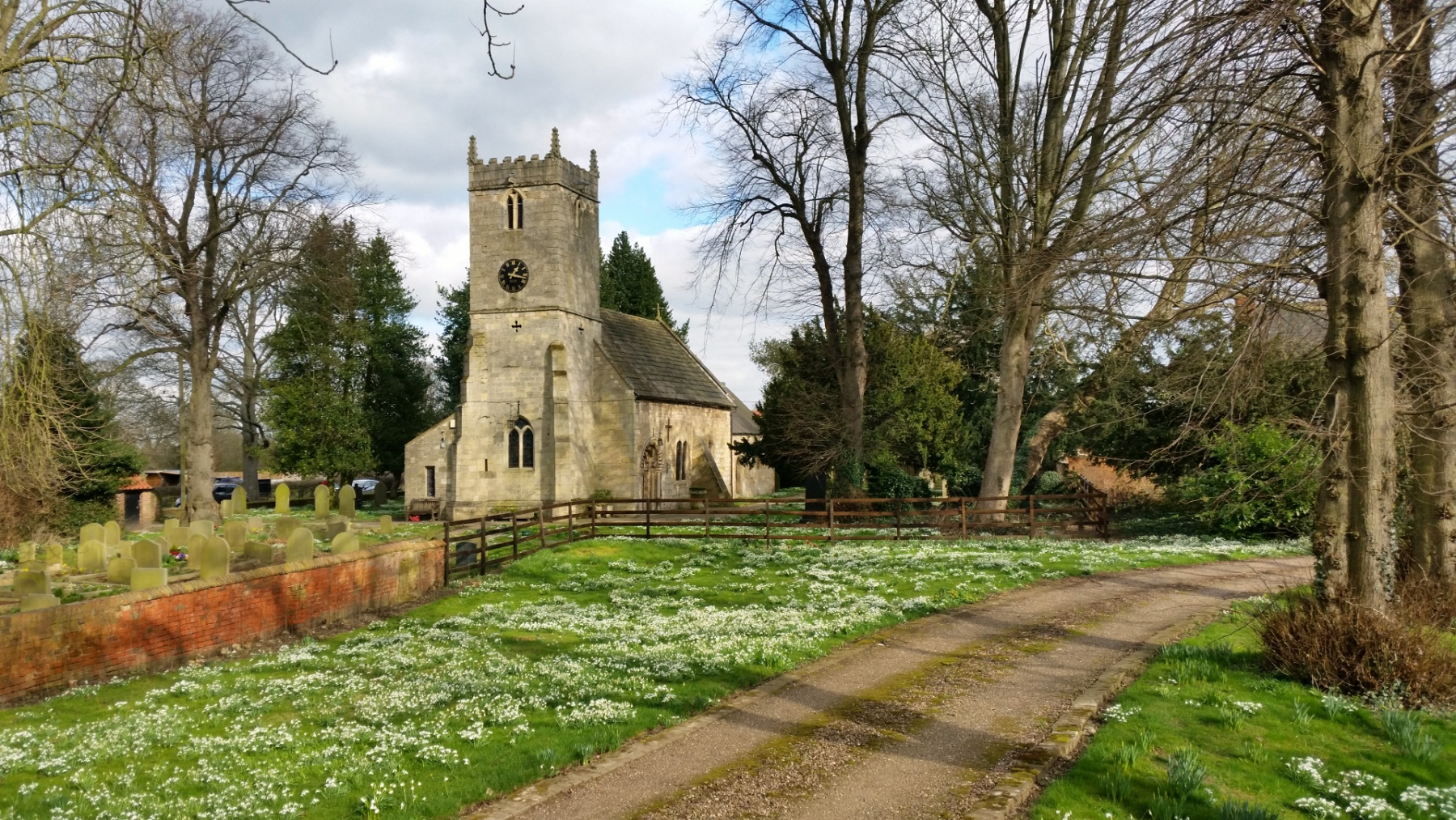 Snowdrops at Kirk Bramwith Church, 26 Feb 2021