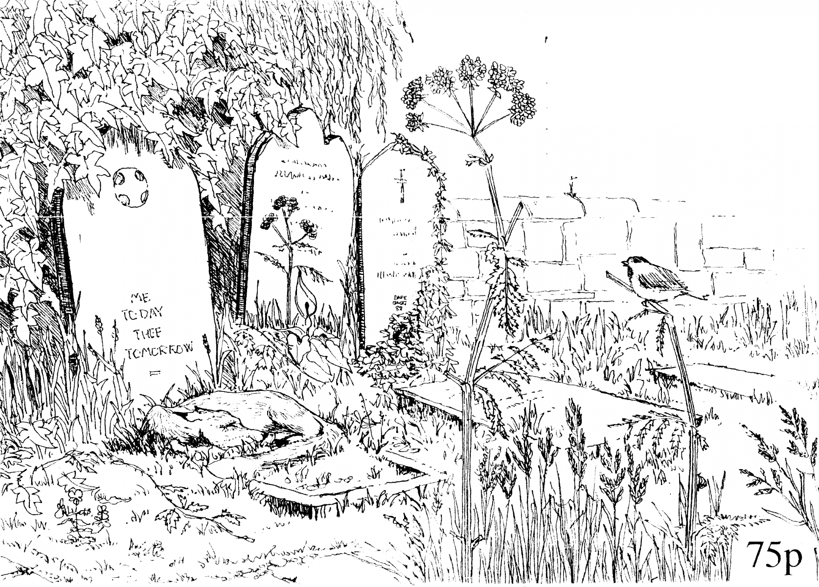Doncaster-Naturalist Cover Sketch by David Gagg