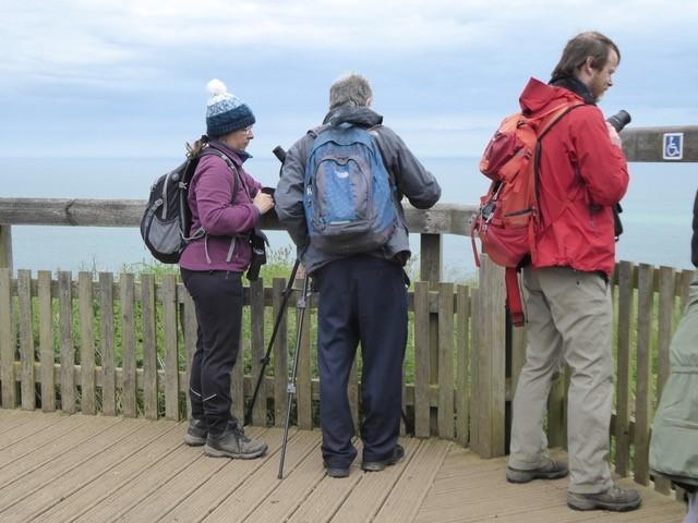 From the viewing platform, Bemptonn Cliffs