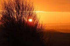 Sunset, RSPB Adwick Washlands.